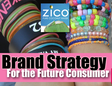 Sustainable Brand Strategies