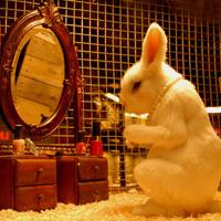 banksyrabbit-thumb_200