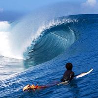 surf league_200